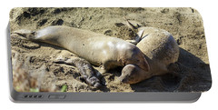 Sea Lion Family Portable Battery Charger