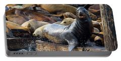 Sea Lions On The Floating Dock In San Francisco Portable Battery Charger