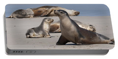 Portable Battery Charger featuring the photograph Sea Lions by Werner Padarin