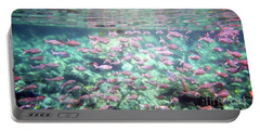 Sea Of Fish 2 Portable Battery Charger by Karen Nicholson