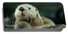 Sea Otter  Portable Battery Charger by Tim Fitzharris