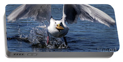 Seagull Flight Portable Battery Charger