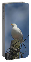 Seagull Perching. Portable Battery Charger