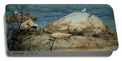 Seagull On A Rock Portable Battery Charger