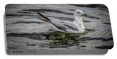 Portable Battery Charger featuring the photograph Seagull On The River by Ray Congrove