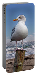 Seagull On The Shoreline Portable Battery Charger