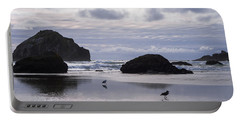 Seagull Reflections Portable Battery Charger