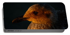 Portable Battery Charger featuring the photograph Seagull Sunrise by Tikvah's Hope