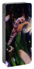 Seahorse Portable Battery Charger