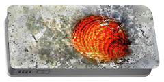 Seashell Art  Portable Battery Charger by HH Photography of Florida