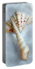 Seashells #2  Portable Battery Charger by Louise Kumpf