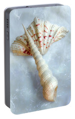 Portable Battery Charger featuring the photograph Seashells #2  by Louise Kumpf