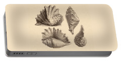 Seba's Spider Conch Portable Battery Charger