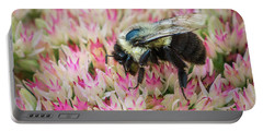 Portable Battery Charger featuring the photograph Sedum Bumbler by Bill Pevlor