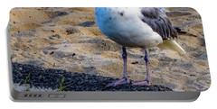 See The Gull Portable Battery Charger