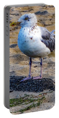 Portable Battery Charger featuring the photograph See The Gull by Kendall McKernon
