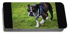 Leroy The Senior Bulldog Portable Battery Charger