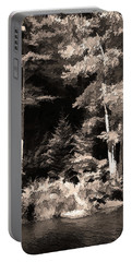 Portable Battery Charger featuring the photograph Sepia Forest by Betsy Zimmerli