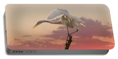 Sepulveda Basin Crane 2 Portable Battery Charger