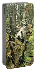 Sequoia Fallen Tree Portable Battery Charger