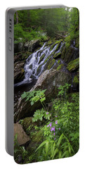 Portable Battery Charger featuring the photograph Serene Solitude by Bill Wakeley
