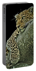 Serengeti Leopard 2a Portable Battery Charger