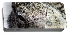 Serious Squirrel Portable Battery Charger