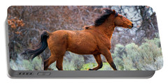 Portable Battery Charger featuring the photograph Shaggy And Proud by Mike Dawson