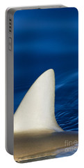 Shark Fin And Blue Portable Battery Charger