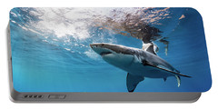 Shark Rays Portable Battery Charger by Shane Linke