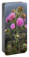 Sharp Thistle Portable Battery Charger
