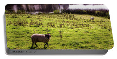 Sheep In Eniskillen Portable Battery Charger