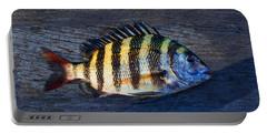 Portable Battery Charger featuring the photograph Sheepshead Fish by Laura Fasulo
