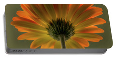 Shine Bright Gerber Daisy Square Portable Battery Charger by Terry DeLuco