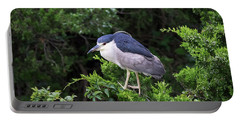 Shore Bird Roosting In A Tree Portable Battery Charger