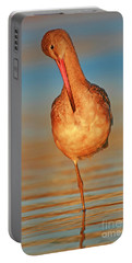 Portable Battery Charger featuring the photograph Shorebird Sunset  by John F Tsumas