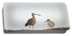 Shorebirds Of Windansea Beach Portable Battery Charger