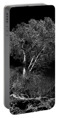 Portable Battery Charger featuring the photograph Shoreline Tree by Roger Mullenhour