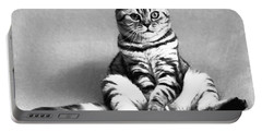 Shy Cat Portable Battery Charger