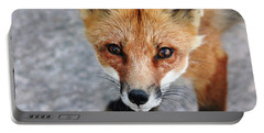 Portable Battery Charger featuring the photograph Shy Red Fox  by Debbie Oppermann