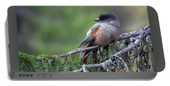 Siberian Jay Portable Battery Charger