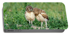 Sibling Love Portable Battery Charger