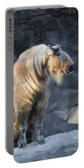 Sichuan Takin Portable Battery Charger