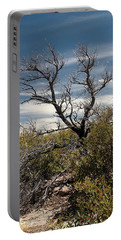 Portable Battery Charger featuring the photograph Signs Of Life After The Fire by Joe Kozlowski
