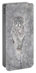 Portable Battery Charger featuring the photograph Silent Snowfall Portrait by Everet Regal
