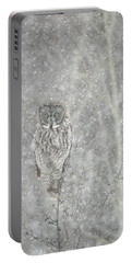 Silent Snowfall Portrait II Portable Battery Charger
