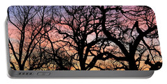 Portable Battery Charger featuring the photograph Silhouettes At Sunset by Chris Berry
