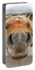 Silly Icelandic Horse Portable Battery Charger
