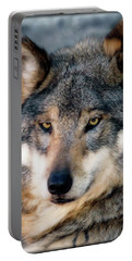 Silly Sancho Portable Battery Charger