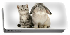 Silver Tabby And Rabby Portable Battery Charger